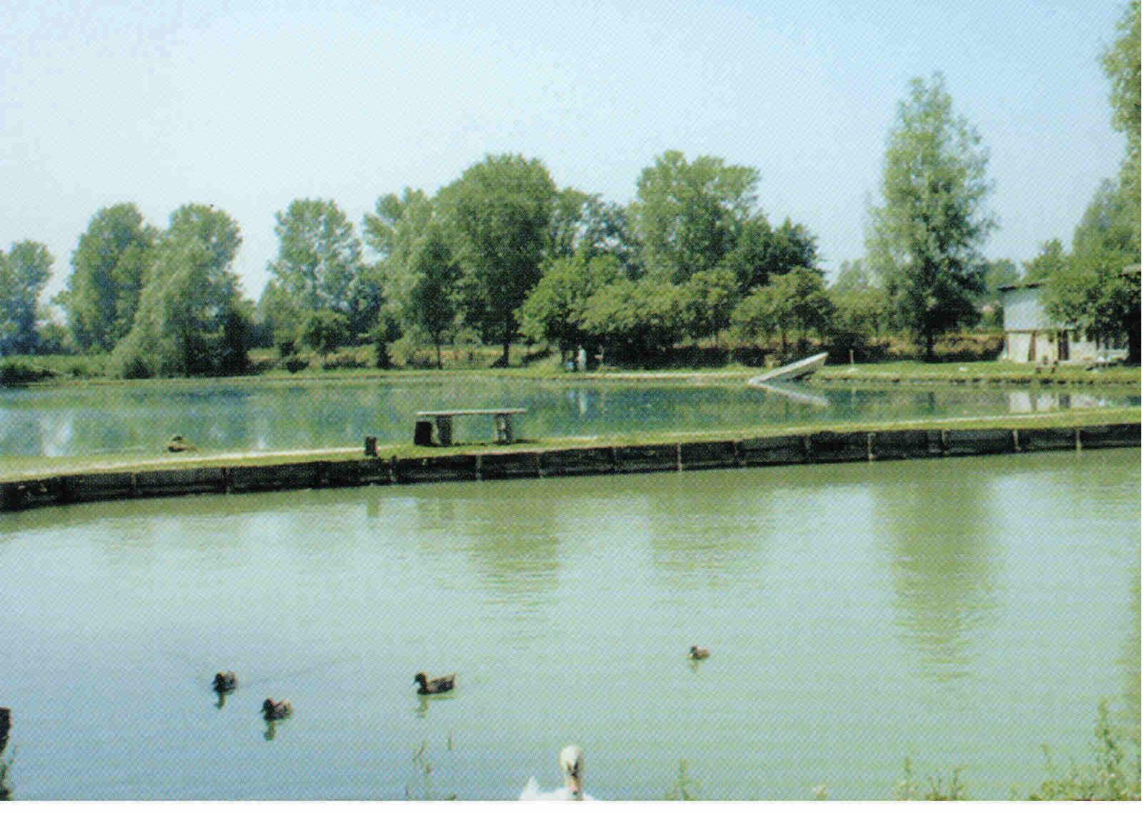 Laghi di pesca for Lago padova